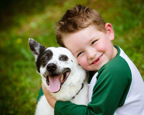 Los perros y la terapia con niños autistas