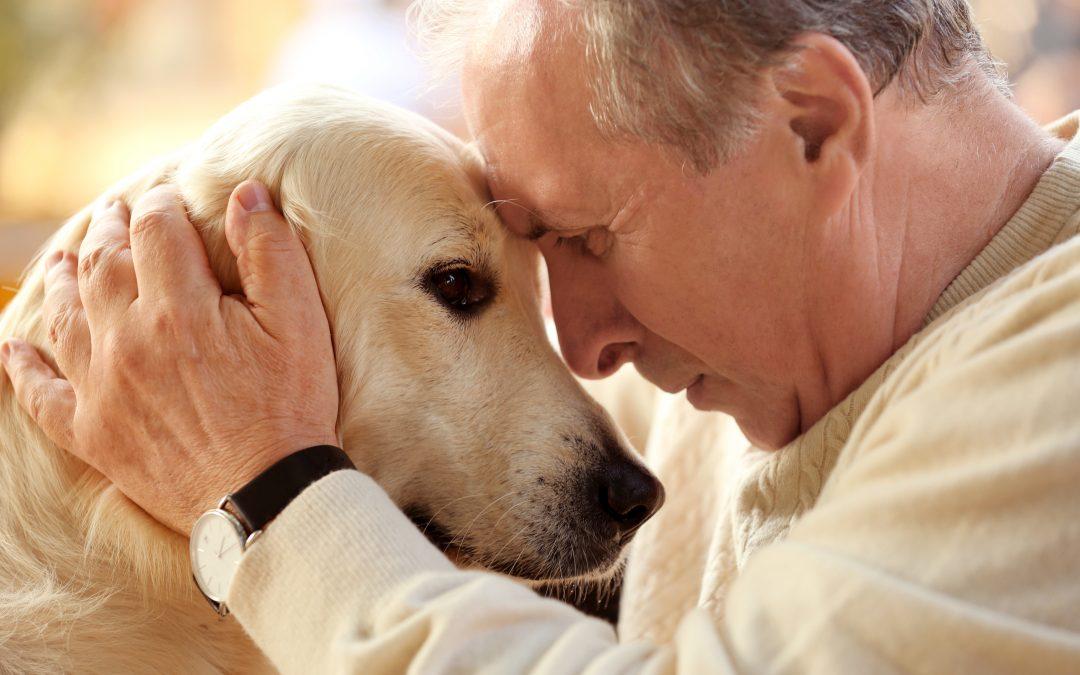 Terapia con perros para personas mayores
