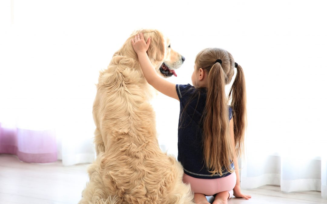 Cómo es la alimentación de un perro de raza grande